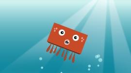 BBSS_108_Octopus_02